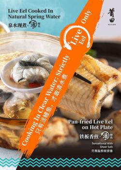 Eel Festival